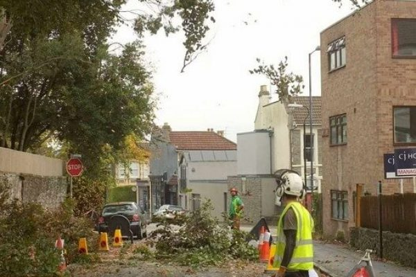 tree cutting on a busy street in a confined spot